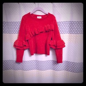 Cat and jack red sweater